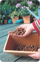 Use clay marbles in the bottom of your flower box to help drainage and get oxygen to the roots.