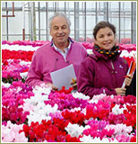 Guy Morel, Cyclamen breeder, with his daughter Héloïse (4th generation)